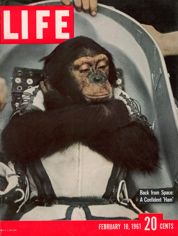 The Monkey in the Rocket (and a bit about Stephen Colbert ...